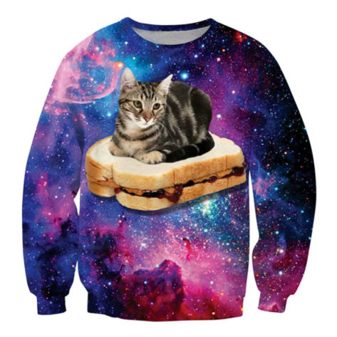 sweat-3D-espace-chat-tartine