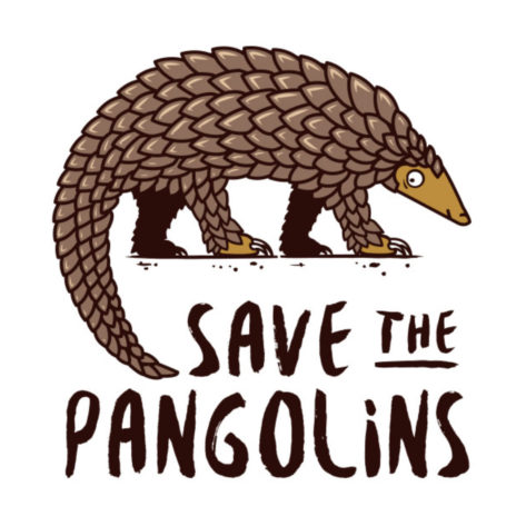 tee-shirt-save-the-pangolins